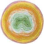 Rico Creative Wool Dégradé Super 6