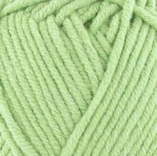 Cosy Fine Light Green 2158