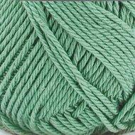 Coral Dark mint 2133